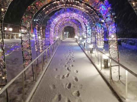 雪の中の願成就温泉①