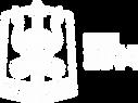 logo site - 6 ANOS.png
