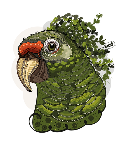 green parrot [web].png