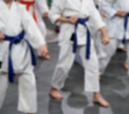 fusion martial arts, eagan