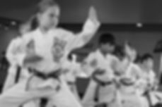 martial arts, kids, taekwondo, eagan, mn
