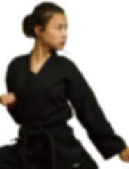martial arts for women, eagan, fusion, taekwondo