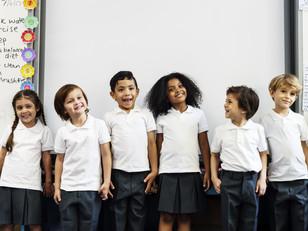 Estrategia de equidad e inclusión en la educación básica (Curso Intensivo)