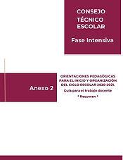 portada 06 ANEXO2 Guia pedagogica Resume
