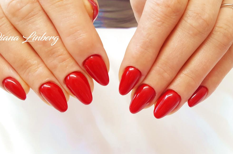 Desire Nails. Diana Linberg