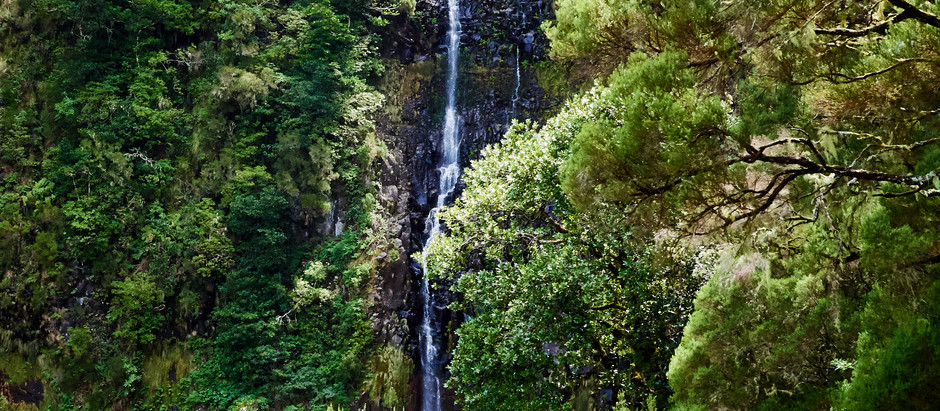 Madeiras Wanderabenteuer