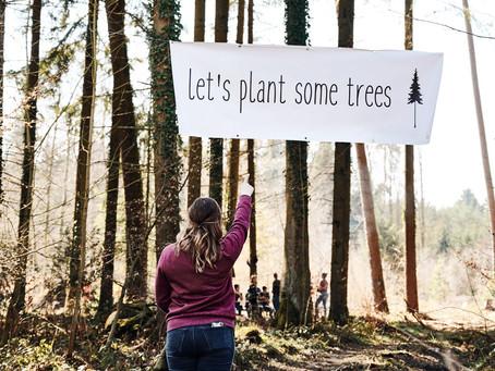 Wir haben Bäume gepflanzt!