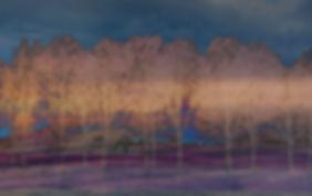 Arbor Wallforweb.jpg