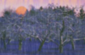 Climatechangeforweb.jpg