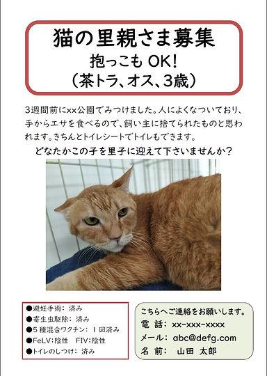 張り紙サンプル_花の木シェルター.jpg