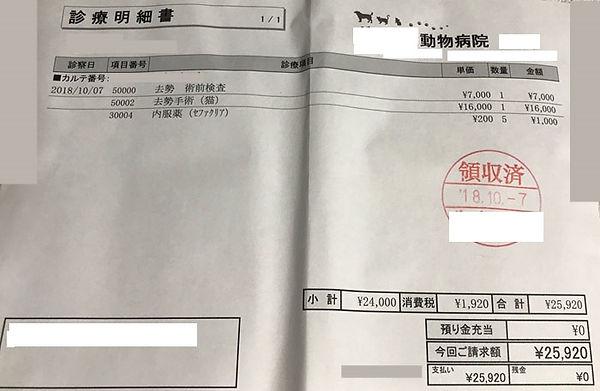 診療明細書_2.jpg