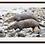 Thumbnail: Framed large prints