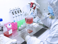 وسائل زراعة الخلايا