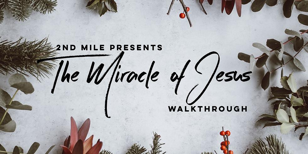 The Miracle of Jesus Walk-Through