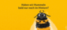 csm__c__BMU__csm_hummel_insektenschutz_k