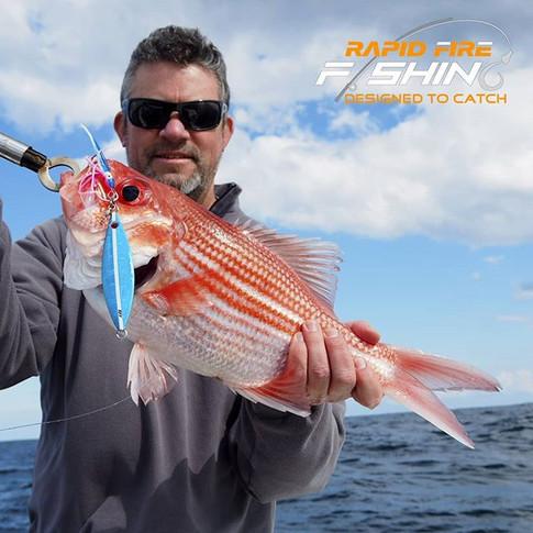 Eclipse Bight Red Fish