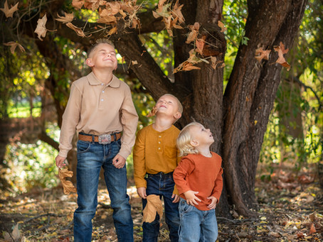 Why Family Portraits Are Essential!
