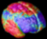 Color Brain.jpg