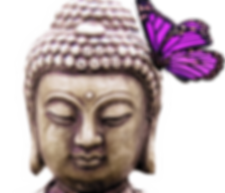buddha_butterfly.png