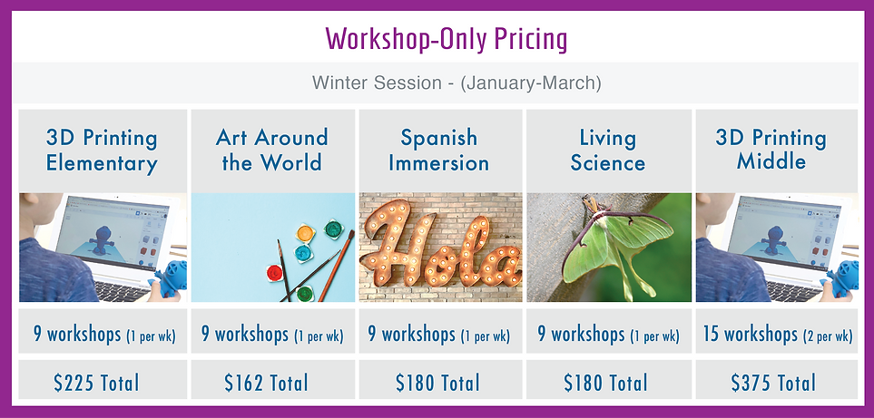 Workshop Only Pricing Winter 2019.png