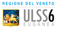 ULSS_6_logoPatrocinatoColori.png