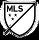 MLS%2520Logo_edited_edited.png