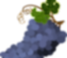 bunch-of-grapes-1300662_640.png
