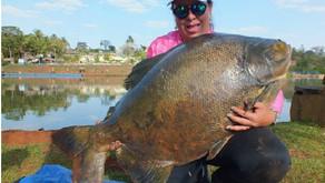 Pescaria no Silvestre Park: uma emoção sem discrição