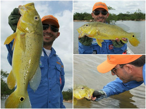 Local: Rio Xingu – Altamira – Pará Pousada Rio Xingu