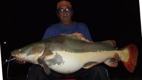 Clube de Pesca Paraíso Verde – Quer capturar grandes e diferentes peixes?  Temos a receita, confiram