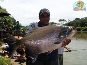 Clube de Pesca Lago Verde – Goiânia-Goiás