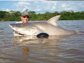 Rio Araguaia – As surpresas deste fascinante paraíso dos gigantes