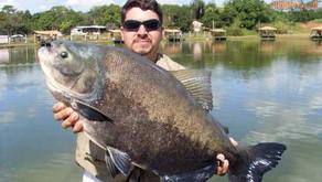 Pesqueiro: Clube de Pesca Engenho Velho, em Trindade-GO.