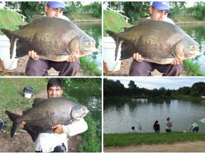 Pesqueiro Monte Negro – Um show de peixes no fim de semana