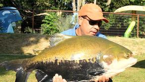 Nativos Pesca Esportiva – Campo Limpo de Goiás – GO