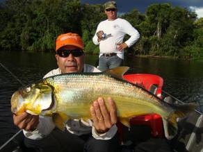 Rio Guaporé – Muitos peixes fisgados com as iscas artificiais