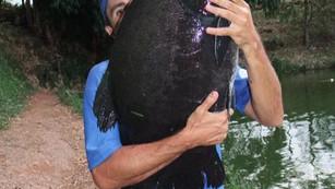 Pesqueiro Monte Negro – Nossa equipe se surpreende com as Pirararas e Tambacus