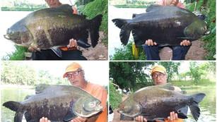 Pesqueiro Monte Negro – Uma ótima pescaria com equipamentos leves