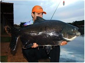 Clube Pescar – Nosso primeiro dia de pescaria com os gigantes no inverno