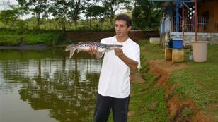 Pesca de barranco, assim como antigamente.