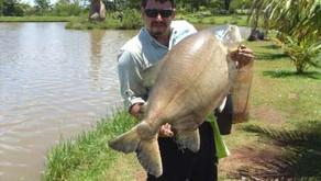 Thermas Park – Uma ótima estrutura e muitos peixes grandes na ponta da linha