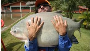 Clube de Pesca Paraíso Verde  -  Campo Limpo de Goiás - GO