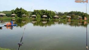 Pesqueiro Paraíso Verde – Turismo no Paraiso Verde em Goiás