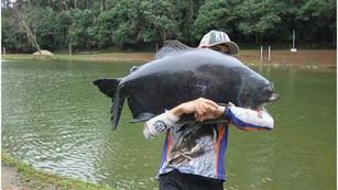 Pesqueiro Monte Negro e suas surpresas
