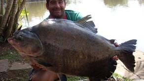 Clube de Pesca Lago Verde – Um começo de inverno com muitos redondos