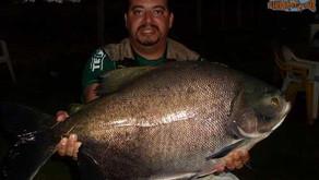 Pesqueiro Paraíso Verde – O Estado de Goiás provando mais uma vez o gigantismo em seus lagos