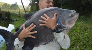 Equipe Fishingtur em pleno inverno no Pesqueiro Monte Negro com a captura de grandes e bons peixes.