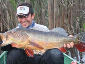 Fishingtur Selvagem -  A Amazônia é sem sombra de dúvidas, o lugar onde nossos sonhos se tornam real