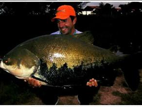 O Fishingtur e Amental Fishing descobriram um novo point dos gigantes