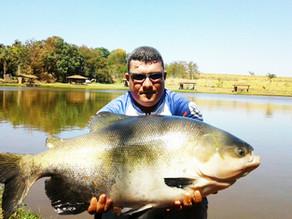 Clube de Pesca Engenho Velho: Casa de Gigantes!